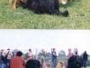 2003 – Wällertreffen